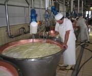 Lavorazione tradizionale del Parmigiano-Reggiano